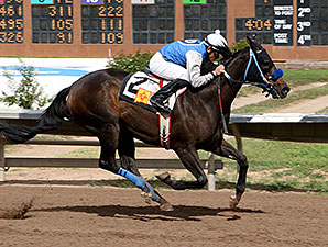 Lakehouse Fun wins the 2013 Chief Narbona