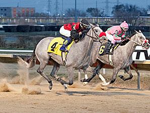 Lakotadreamcatcher wins the 2013 Pat Whitworth Illinois Debutante Stakes.