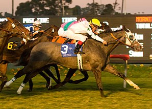 Lang Field Stuns Citation Rivals