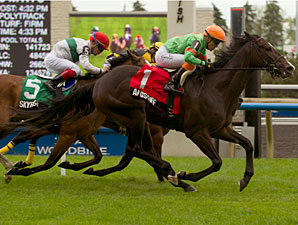 Langstaff wins the 2013 Bold Ruckus Stakes.