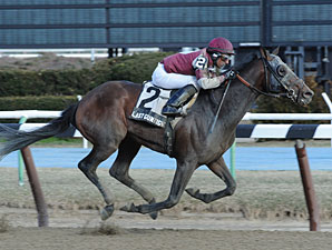 Last Gunfighter Invades for Pimlico Special