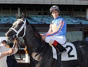 Lauburu wins his debut on November 13, 2010.