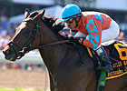 Laughing Makes Woodbine Return in Canadian