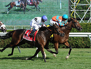 Laughing wins the 2013 Diana Stakes.
