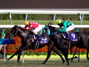 Centimeter Settles Japan's Sprinters Stakes