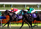 Centimeter Settles Japan&#39;s Sprinters Stakes