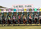 Laurel's Average Handle Rises for Winter Meet