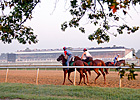Laurel Park Meet Features More Money, Stakes 