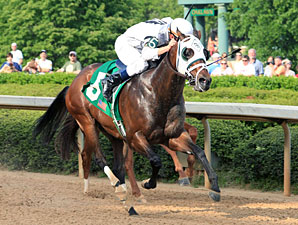 Laurie's Rocket wins the 2012 Bachelor Stakes.
