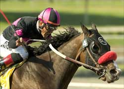 Lava Man to Prep at Keeneland for Breeders' Cup