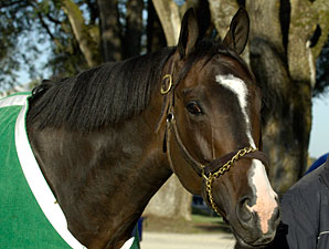 Lava Man Moves to Turf for San Gabriel