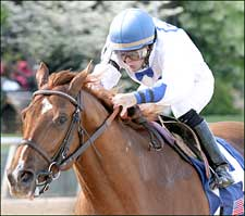 Arkansas Derby Winner Lawyer Ron Sent to Pletcher