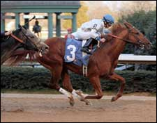 Lawyer Ron, Private Vow Square Off in Arkansas Derby