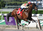 Three Off-the-Turf Stakes Downgrades Upheld