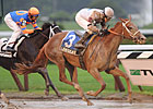 Le Mi Geaux Takes Sloppy Schuylerville