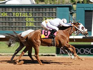Lefty Who wins the 2010 Sierra Blanca.