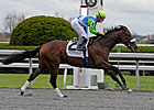 Barbaro's Brother a Step Away from Derby