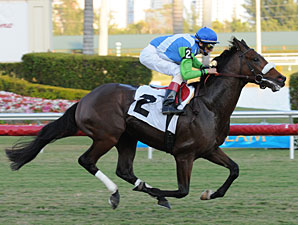 Barbaro's Brother, Lentenor, Breaks Maiden