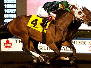 Lexie Lou wins the 2013 Muskoka Stakes.
