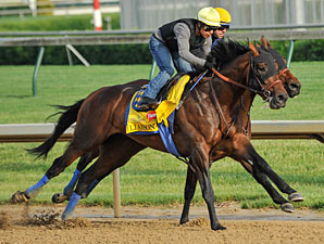 Liaison works towards the Kentucky Derby. 4/30/2012