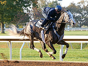 Productive Morning for Pletcher Stable