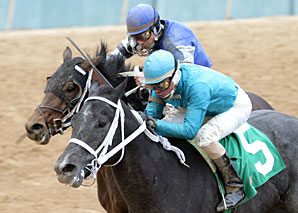 Liberty Bull (near) noses out Isabull to win the Smarty Jones at Oaklawn jan. 21.