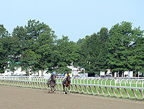 Tonalist and Life in Shambles - Saratoga, August 16, 2014.