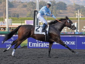 Life Is Sweet Confirmed for Dubai World Cup