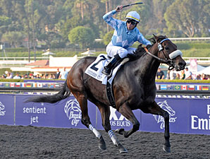 Ladies' Classic Winner Life is Sweet Retired