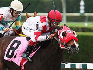 Light Bringer wins the 2014 Chispiski Stakes.