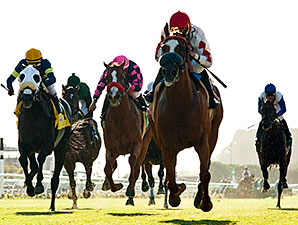 Del Mar Sets Plan to Solve Turf Course Issue