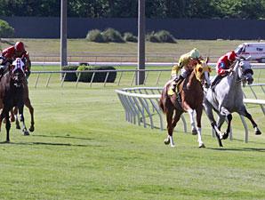 Lillie Abbie wins the 2013 Lane's End Stallion Scholarship Stakes.