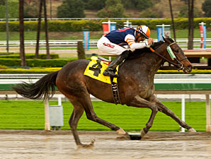 Lindz Winz wins the 2012 Irish O'Brien Stakes.