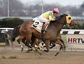 Lion D N A wins the 2013 Interborough Stakes.