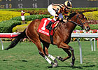 Little Mike Wins by Nose in Gulfstream Return