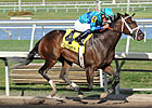  Live Lively, Davona Dale Winner, Euthanized