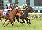 Lochte Triumphs in Tampa Bay Thriller