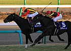 Logotype Upsets Codino in Asahi Hai Futurity 