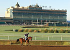 Lone Star Attendance Rises, Wagering Declines
