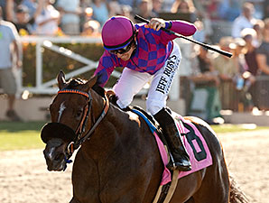 Long Hot Summer wins the 2014 Generous Portion Stakes.