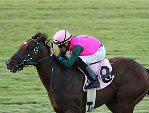 Long On Value wins the 2013 Jamestown Stakes.