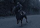 Longines Horse Racing Promo