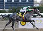 New York-breds Shine in Stallion Stakes
