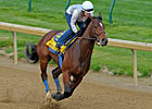 Monday Works: Lucky Drills 5f in 1:00 4/5