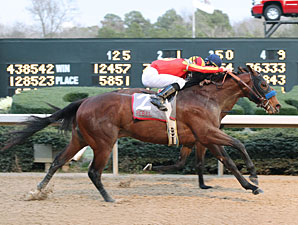 Lookin At Lucky, Zenyatta Top NTRA Polls