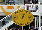 Triple Crown Talk: Preakness Bleakness