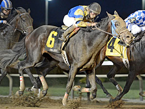 Looking Cooking Cool wins the 2013 Iowa Derby.