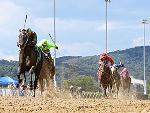 Looks to Spare wins the 2015 West Virginia Governor's Stakes.
