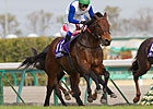 Champ Lord Kanaloa Sets Chukyo Course Record