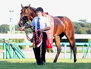 Lord Kanaloa wins the Sprinster Stakes with jockey Yasunari Iwata.